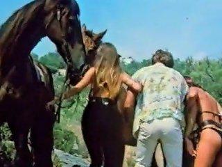 Kesse Kurven Und Kanaillen 1980 Free Porn 48 Xhamster