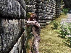 Skyrim Argonians Fuck In Solitude